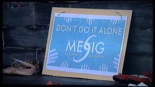 MESiG Missing Millions Explained